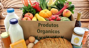 5d186f921 O Brasil está se consolidando como um grande produtor e exportador de  alimentos orgânicos, com mais de 15 mil propriedades certificadas e em  processo de ...